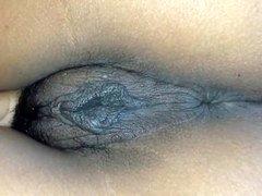 Hmoov pim dub