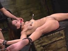 gourgeous kitten sucks and furthermore fucks section feature 1