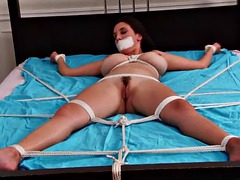 jeleena bed tied